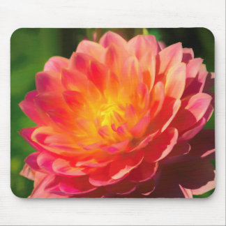 Summer Spectacle Mouse Mat