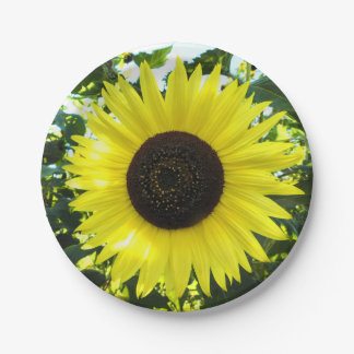 Summer Sunflower Paper Plate