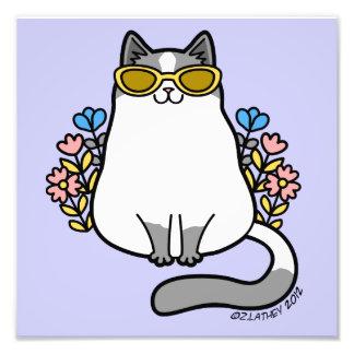 Summer Sunglasses Kitty Cat - Gray and White Photo Print