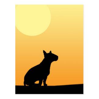 Summer Sunset Bull Terrier Postcard