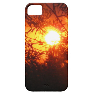 Summer sunset in Canberra iPhone 5 Covers