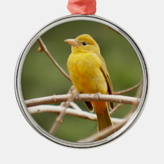 Summer Tanager Christmas Ornament