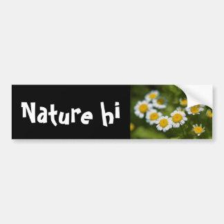 summer to savour bumper stickers