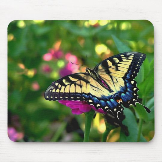 Summer Visitor Mouse Pad