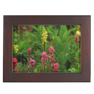 Summer Wildflowers Send Forth A Riot Of Color Keepsake Box