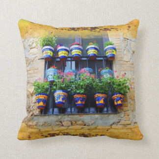 Summer window cushion