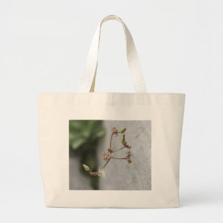 Summer Wish Weed Bags