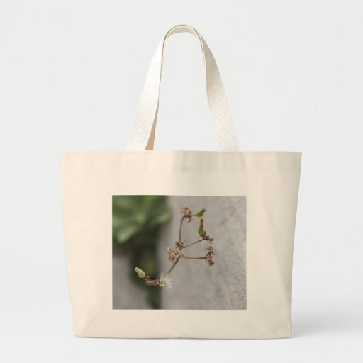Summer Wish Weed Bags