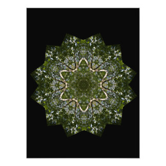 Summer Wood Star Photo Print