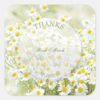 Summerfield Daisies Camomile Flower Wedding Thanks Square Sticker
