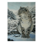 Summit King Snow Leopard poster size up to large