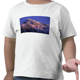 Summit of Denali Peak Mt. McKinley) at Tshirt