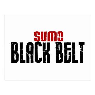 Sumo Black Belt Karate Postcard