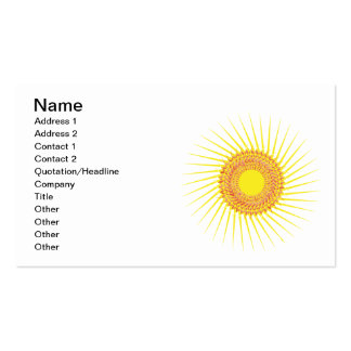 Sun 2 pack of standard business cards