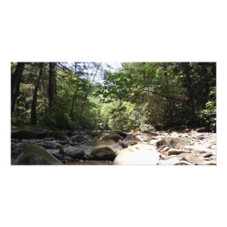 Sun and Shadow in a Creek Bed Photo Greeting Card
