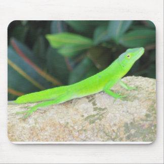 Sun bathing green lizard mouse pad