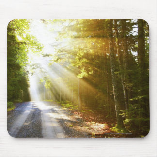 Sun Beams Through Forest in Acadia National Park Mouse Mat