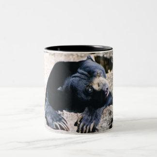 Sun Bear Coffee Cup