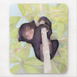 Sun Bear Cub Mousepad