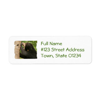 Sun Bear with Mouth Open Return Address Label