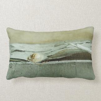Sun Bleached Wabi Sabi Pillow