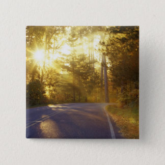 Sun bursts through the forest onto roadway at 15 cm square badge