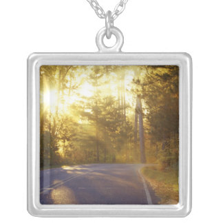Sun bursts through the forest onto roadway at silver plated necklace