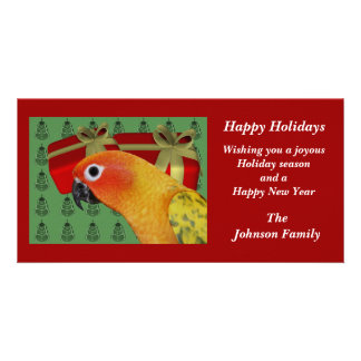Sun Conure Parrot Animal Christmas Holiday Card Photo Greeting Card