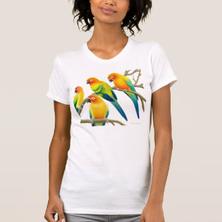 Sun Conure Parrots Scoop Neck Tee