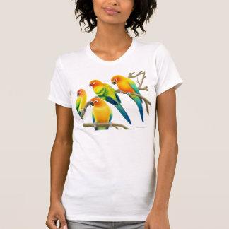 Sun Conure Parrots Scoop Neck Tee
