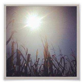 Sun-Corn God 2 Photographic Print
