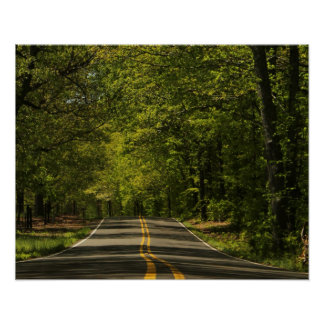 Sun-Dappled Country Road Poster