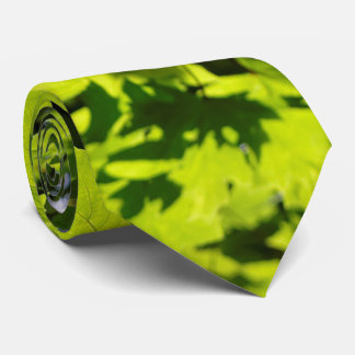 Sun-Dappled Leaves in the Forest Tie