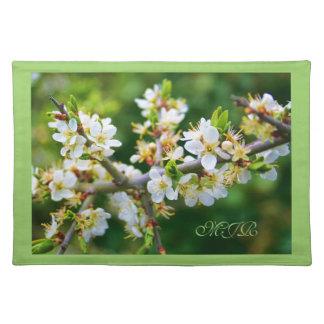 Sun-Dappled Spring Hawthorn Placemats