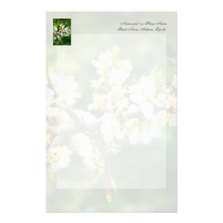 Sun-Dappled Spring Hawthorn Stationery