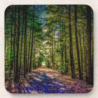 Sun Down Woods Drink Coaster