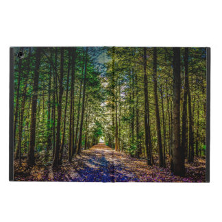 Sun Down Woods iPad Air Cover