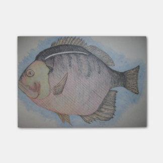 Sun Fish Post-it Notes