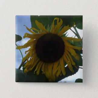 Sun Flower 15 Cm Square Badge