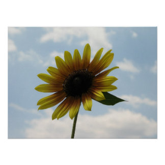 SUN FLOWER WITH CLOUDY SKY POSTER