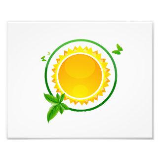 sun green circle butterflies eco design.png art photo