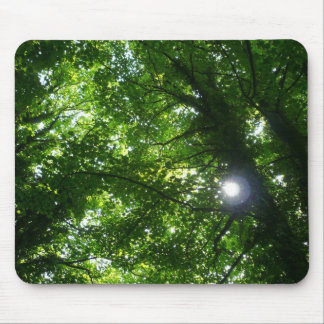 Sun in the Trees Mouse Mat