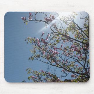 Sun in the Trees - mousepad