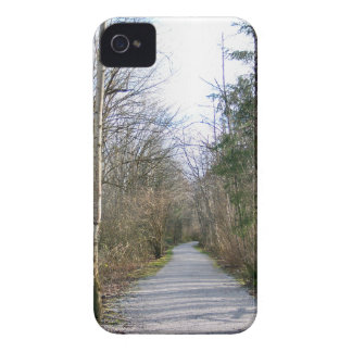 Sun-kissed Winter Branches iPhone 4 Case-Mate Case