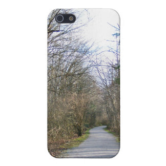 Sun-kissed Winter Branches iPhone 5 Case
