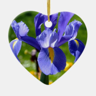 Sun light on blue iris christmas ornament