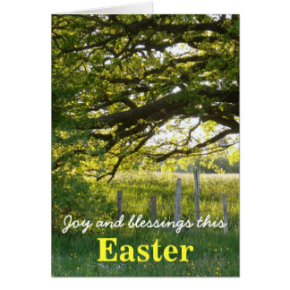 Sun Lit Trees Easter Card