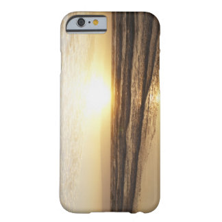 Sun on horizon over ocean barely there iPhone 6 case