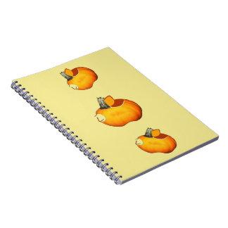 Sun Orange Pumpkin Notebooks