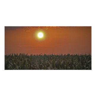 Sun Over a Corn Field Personalized Photo Card